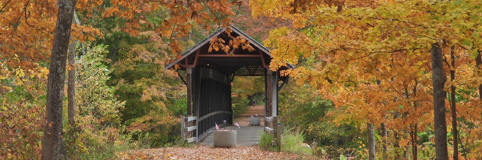 Photo of covered bridge in fall